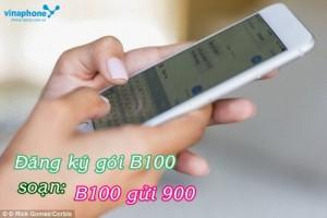 nhan-uu-dai-3-trong-1-khi-dang-ky-goi-cuoc-b100-mang-vinaphone