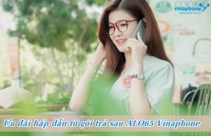 goi-cuoc-tra-sau-ca-nhan-alo65-vinaphone